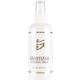 RaNails Sanitizer płyn antyseptyczny 170 ml
